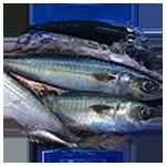 foto-produk-ikan-27-150